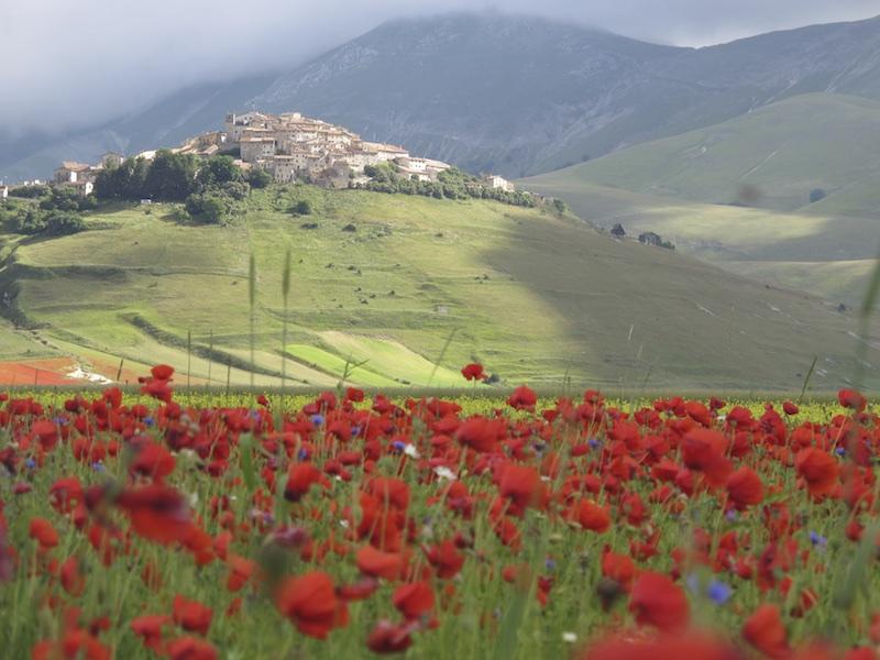 Umbria Travel 012