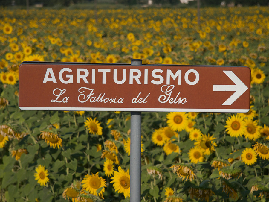 This way for Umbrian agriturismo !