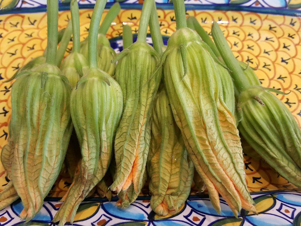 Fresh Zucchini Blossoms