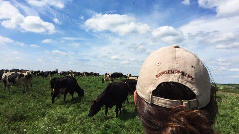 Exploring America's Dairyland