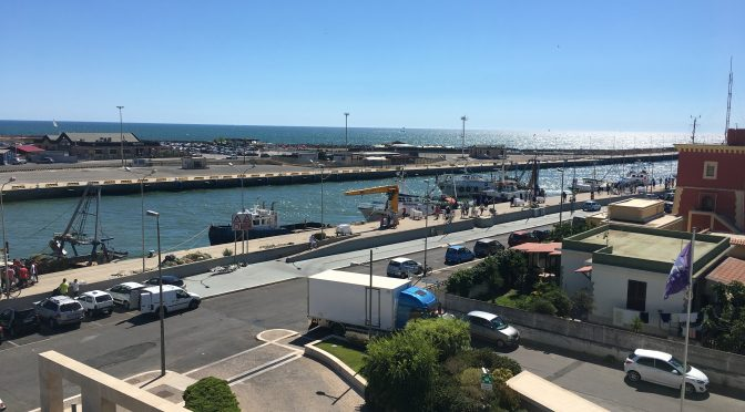 The port of Fiumicino.  The village's fishing fleet heads to sea every morning, returning with fresh catch around 3pm.